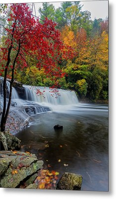 Red Leaves In Dupoint Park Hooker Falls Metal Print by Andres Leon
