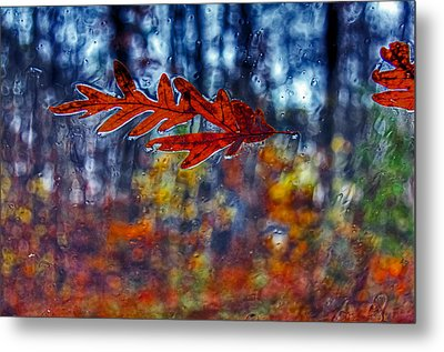 red leaves on windshield Dry Brush Metal Print