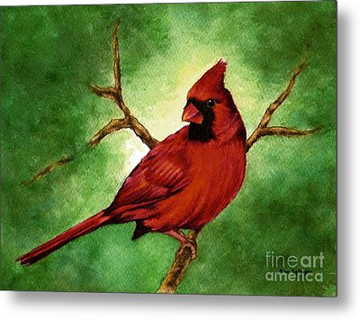Red Male Cardinal Metal Print