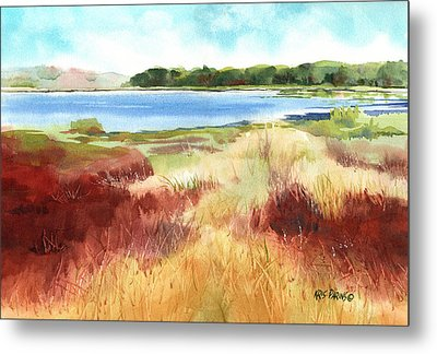 Red Marsh Metal Print