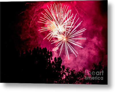 Red Night Metal Print by Suzanne Luft