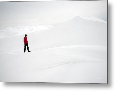 Red On White Metal Print by Leland D Howard
