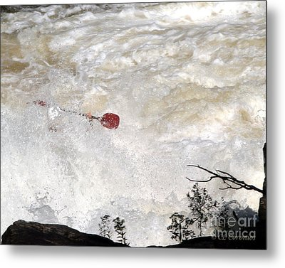 Metal Print featuring the photograph Red Paddle by Carol Lynn Coronios