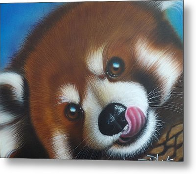 Red Panda Metal Print by Darren Robinson