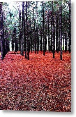 Red Path Metal Print