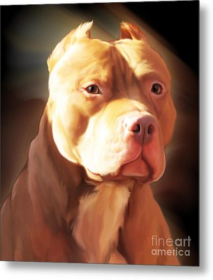 Red Pit Bull By Spano Metal Print