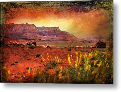 Red Planet Metal Print by Barbara Manis