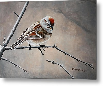 Red Poll Metal Print by Pam Kaur