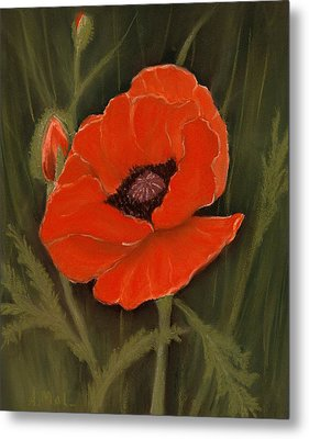 Red Poppy Metal Print by Anastasiya Malakhova