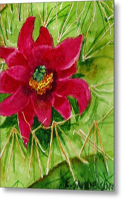 Red Prickly Pear Metal Print by Eric Samuelson