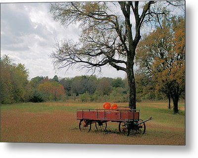 Red Pumpkin Wagon Metal Print by Paulette Maffucci