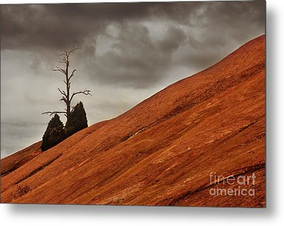 Metal Print featuring the photograph Red Rock by Dana DiPasquale