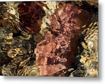 Red Rock Metal Print by Fred  Sheridan
