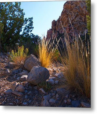 Red Rock Morning Light Metal Print
