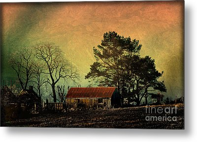 Red Roof Landscape Metal Print by Liz  Alderdice