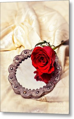 Red Rose Metal Print by Amanda Elwell