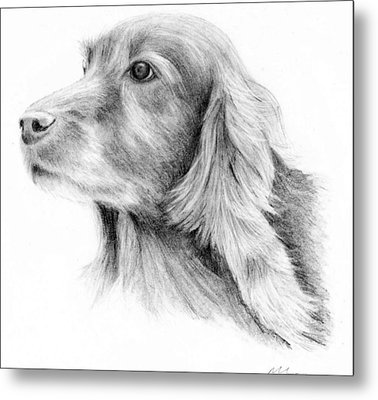 Red Setter Metal Print by Mary Mayes