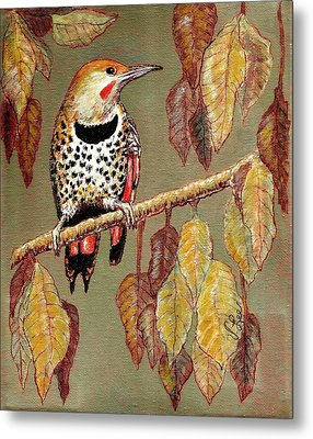 Metal Print featuring the painting Red Shafted Flicker by VLee Watson