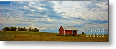 Red Shed Metal Print