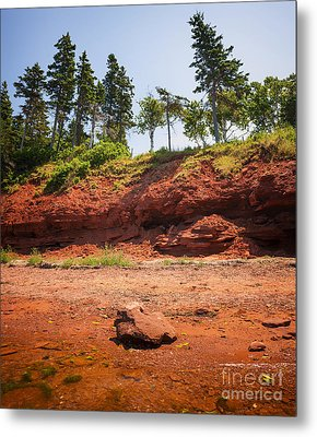 Red Shore Of Prince Edward Island Metal Print by Elena Elisseeva