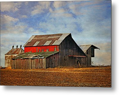 Red Side Barn Metal Print by Marty Koch
