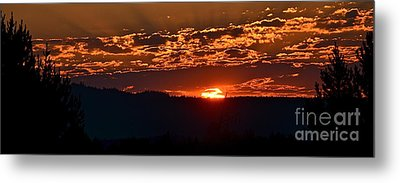Metal Print featuring the photograph Red Sky At Morning by Barbara Dudley
