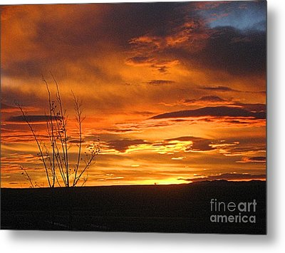 Red Sunrise Metal Print