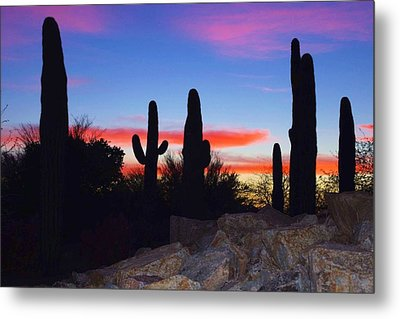 Red Sunset Metal Print by David Rizzo