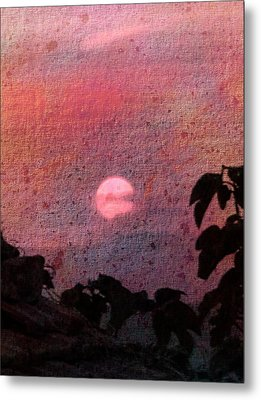 Red Sunset Metal Print by Dorothy Berry-Lound