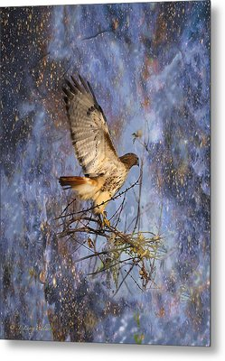 Metal Print featuring the digital art Red-tailed Hawk Applauding The Early Morning Sunrise by J Larry Walker