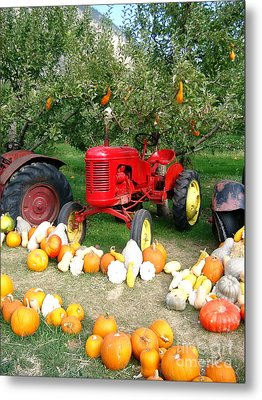 Metal Print featuring the photograph Red Tractor Under The Gourds by Joyce Gebauer