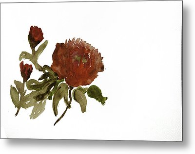 Red Tree Peony Metal Print by Lesley Rigg