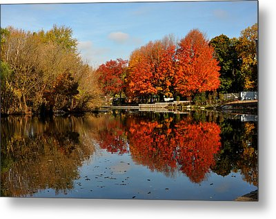 Red Trees Double Metal Print by Diane Lent