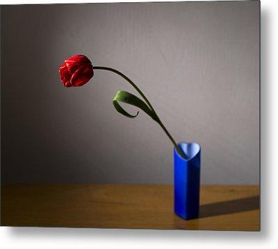 Red Tulip Metal Print by Ivan Vukelic