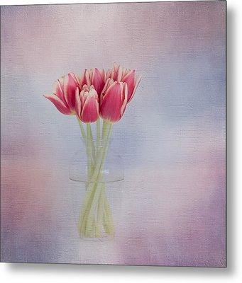 Red Tulip Still Life Metal Print by Kim Hojnacki