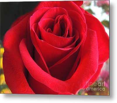 Red Velvet Metal Print by Kristine Merc