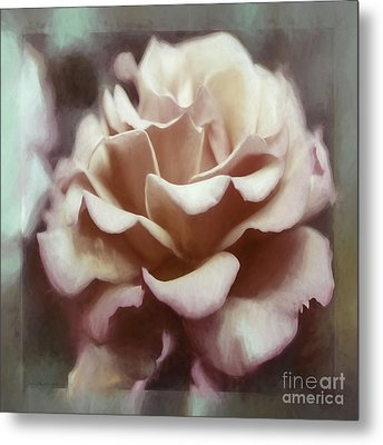 Metal Print featuring the photograph Red White Rose by Jean OKeeffe Macro Abundance Art
