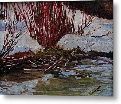 Red Willows Metal Print by Suzanne Tynes