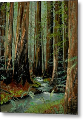 Redwood Forest Stream Metal Print