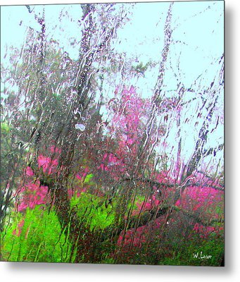 Redbud Trees Metal Print