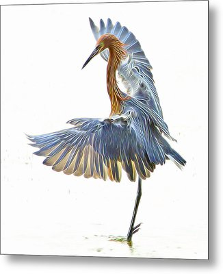 Metal Print featuring the digital art Reddish Egret 1 by William Horden