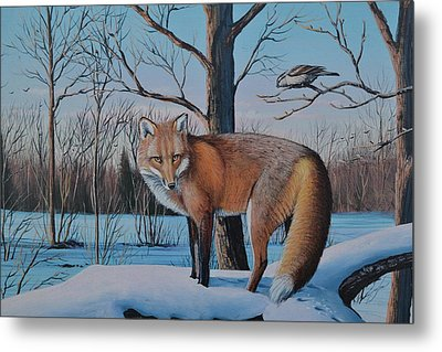 Redfox And Chickadee Metal Print