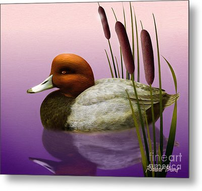 Redhead And Cattails Metal Print