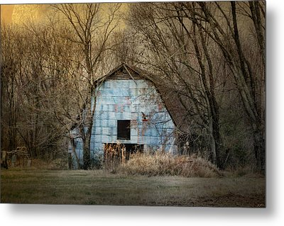 Redtail At The Blue Barn Metal Print by Jai Johnson