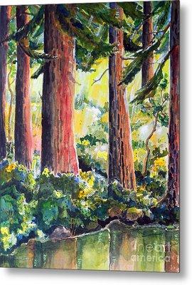 Redwoods Metal Print by Terry Banderas