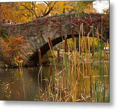Metal Print featuring the photograph Reeds And Gapstow Bridge by Jose Oquendo