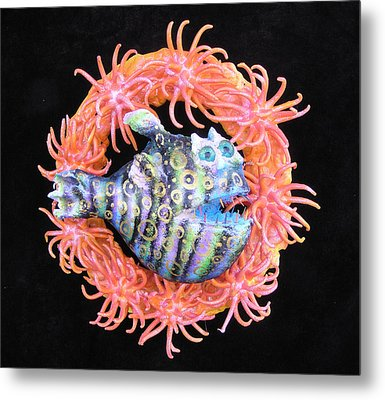 Reef Magic Metal Print