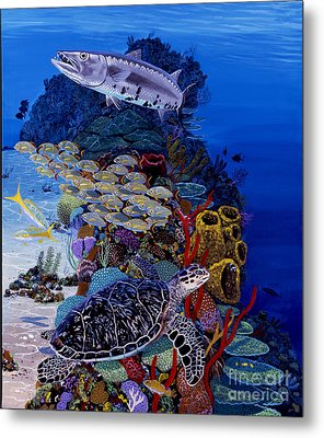 Reefs Edge Re0025 Metal Print by Carey Chen
