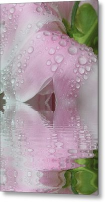 Reflected Tears Metal Print by Barbara S Nickerson