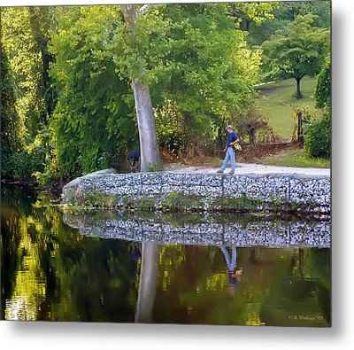Reflecting Metal Print by Brian Wallace